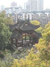 Wuhan 3_1.jpg