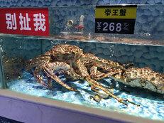 Wuhan 7_1.jpg